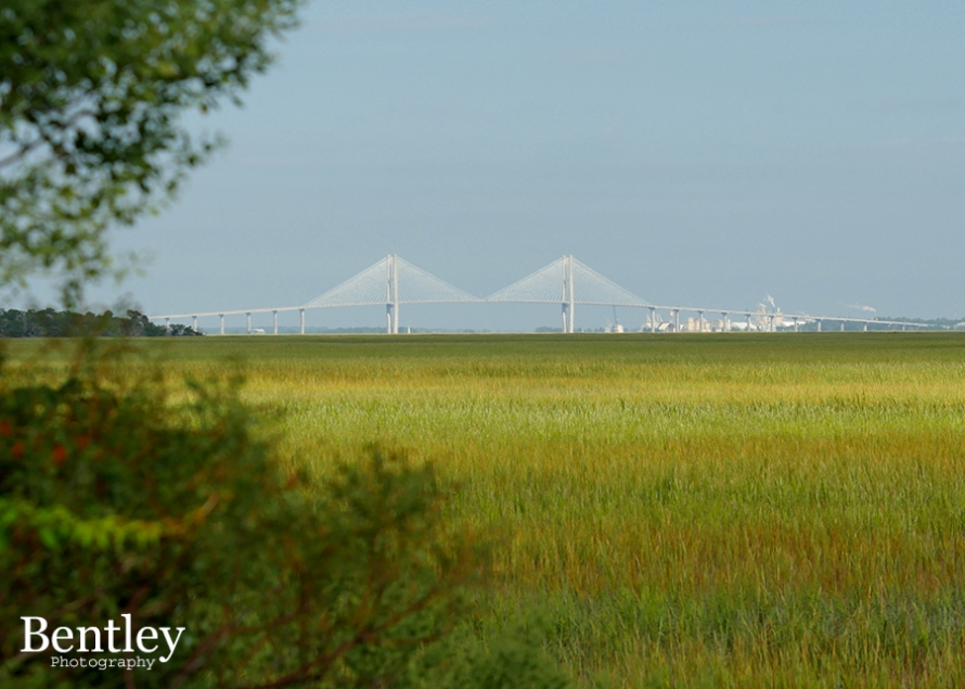 gppa_sindey-lanier-bridge