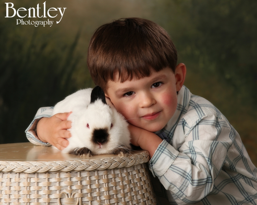 Easter bunny portraits